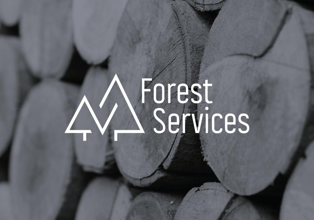 branding logo design fs