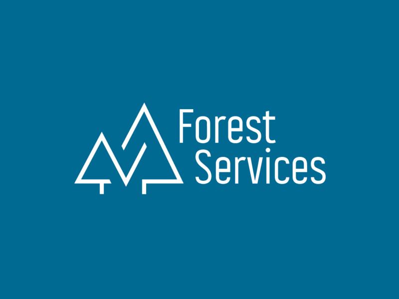 branding logo design fs2x