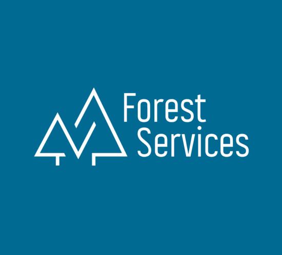 branding logo design fs2